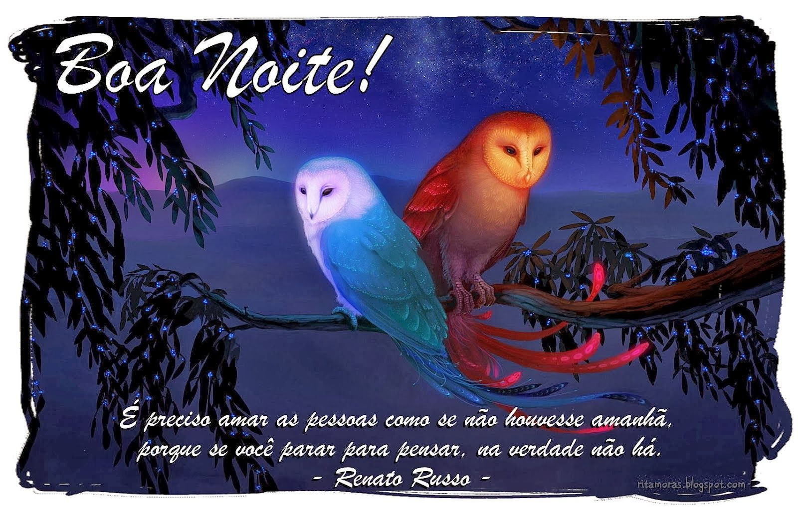 Frases Engracadas De Boa Noite: Frases De Boa Noite Engraçadas - Bing Images