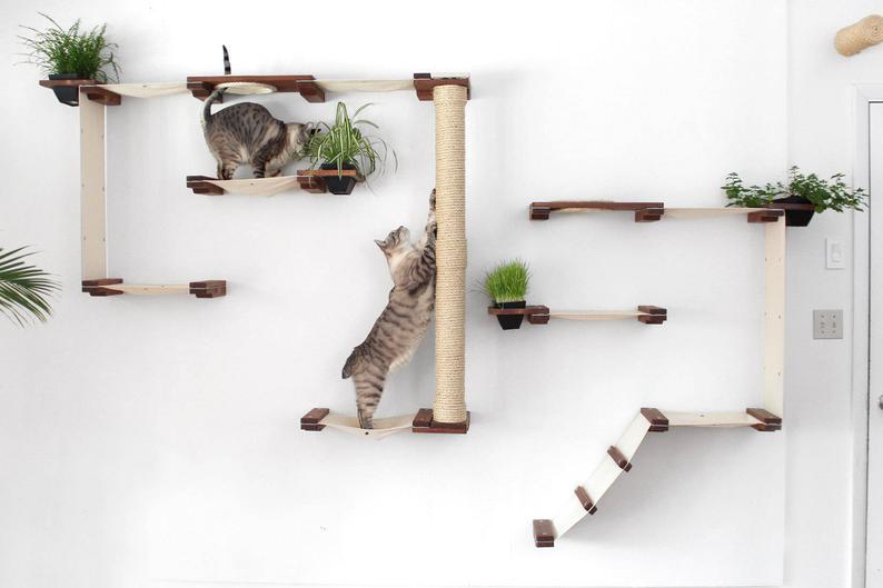 Gardens Complex Mod Wall Cat Shelves Cat Wall