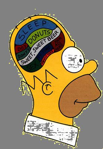 0a2e15df5fcbf9c804c1141c5c678171 homer meme google search simpsons pinterest meme