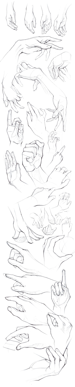 Pin by Tamara Pérez on 1. Body-chan | Pinterest | Drawing exercises ...