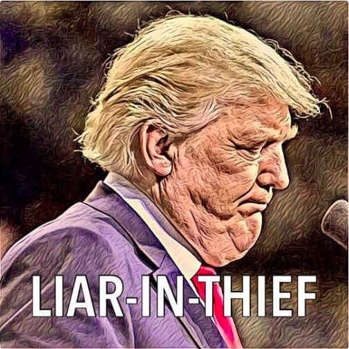 Yes he really is a liar, a racist, a misogynist and a truly insane, narcissistic moron!