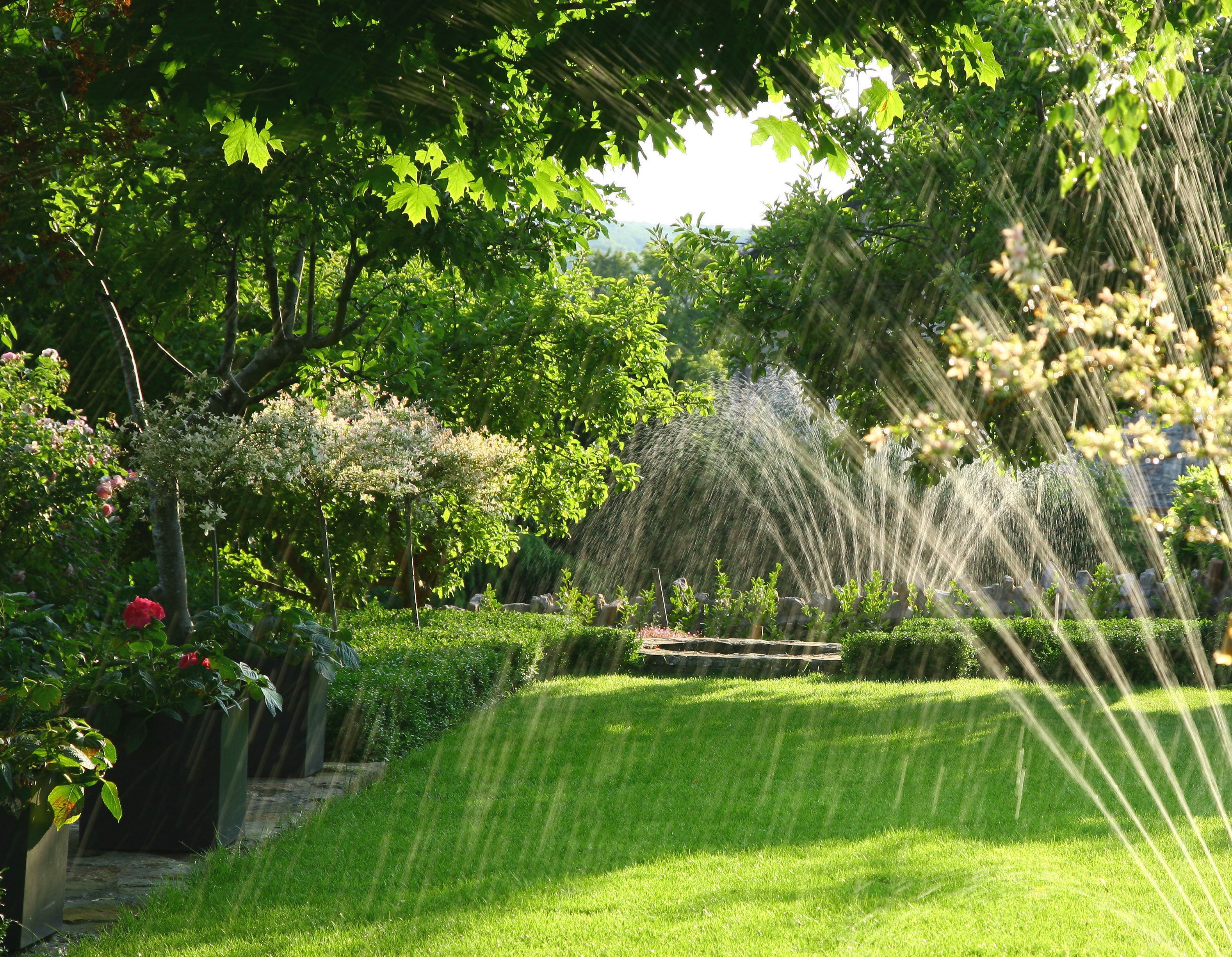 Watering Tips for Your Phoenix Rental's Lawn is part of lawn Tips Water - Whether you've just moved to Phoenix or are renting a home for vacation, you should know how often to water the grass to maintain your lawn