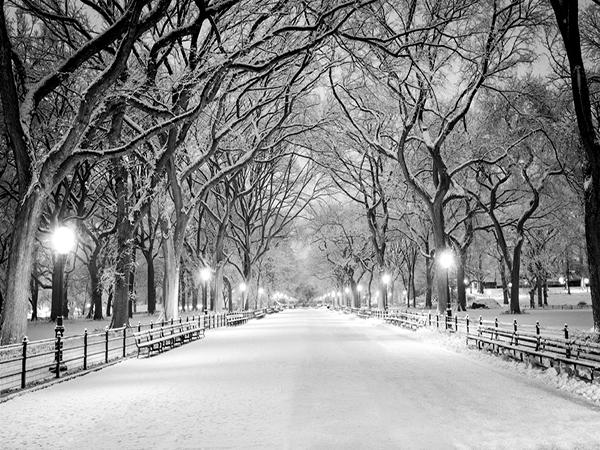 Pin By Petty Lovely Lovely On Winter Snow Photography Snow Scenes Photography Winter Snow Photography Winter Photography