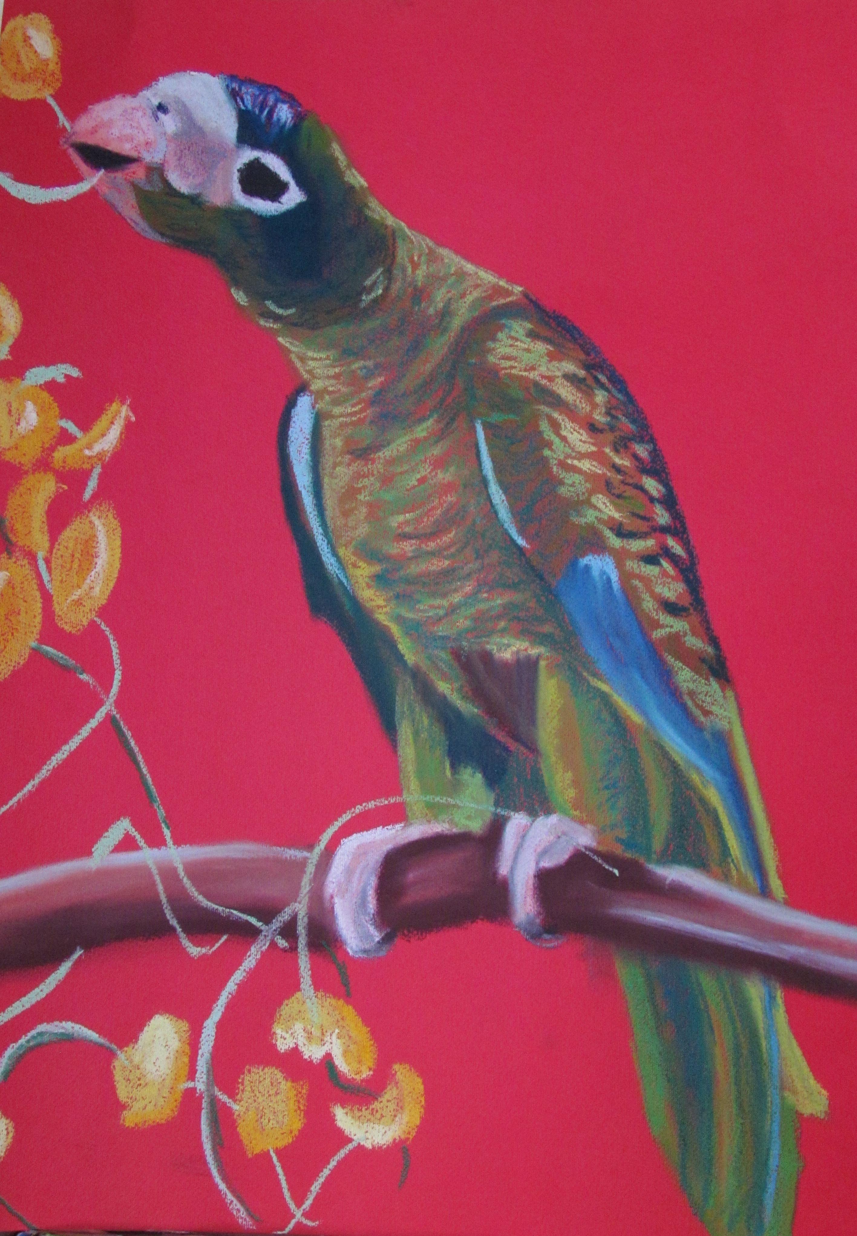 Pin by jorgelina yarag on pintando animales pinterest haiti