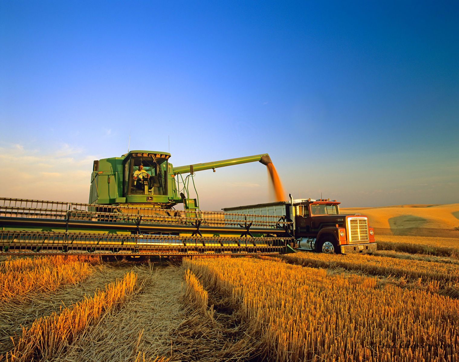 united grain grower case Proposals for increased (or, in the case of grading  tant grain crops grown in  the united states exceeds those  and the united grain growers own 743 out of.
