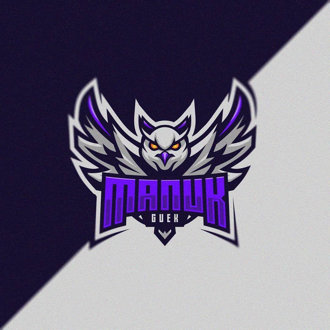 Le meilleur Écran pubg illustration Suggestions,Owl logo