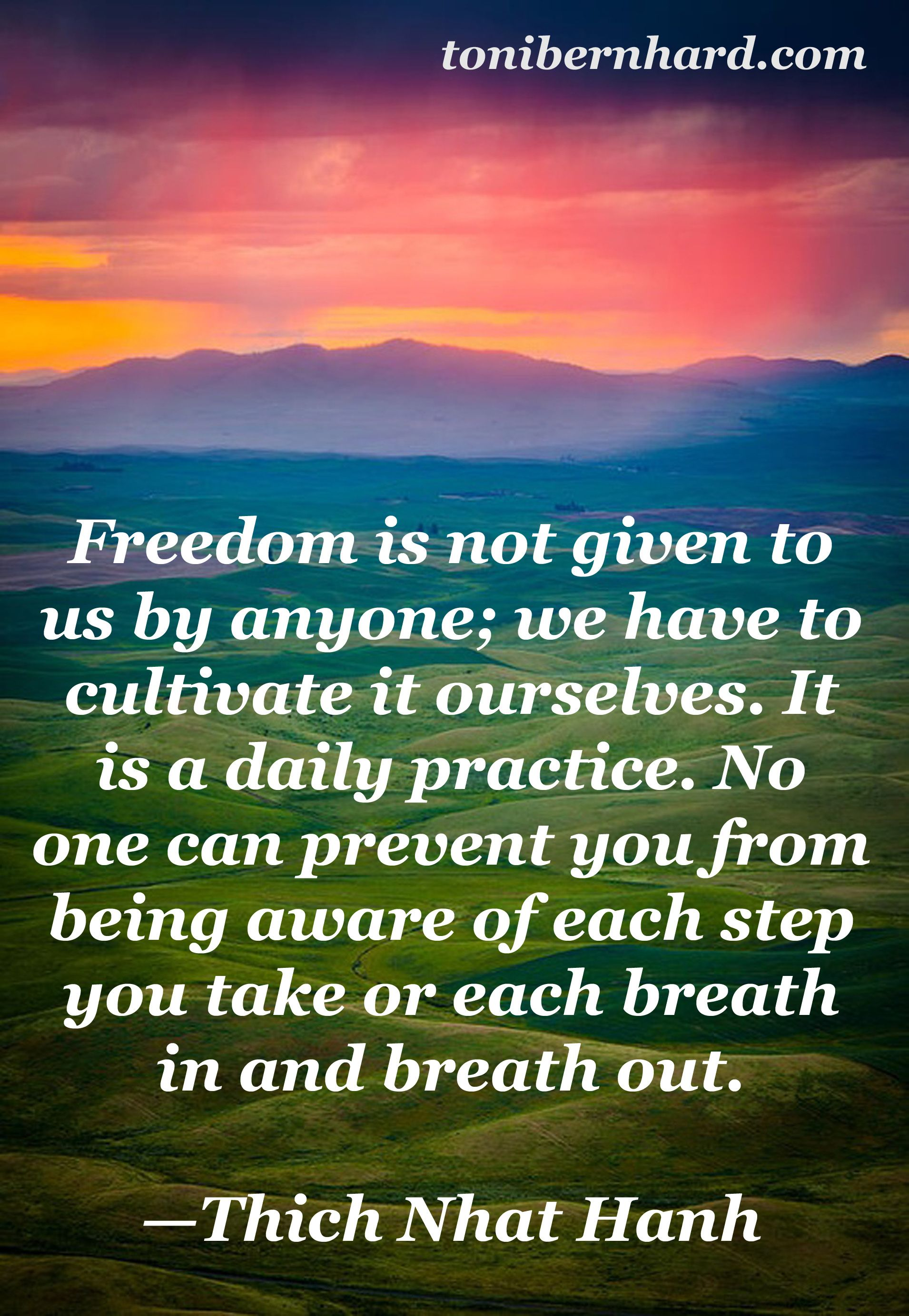 Freedom Thich Nhat Hanh Buddhist Quotes Buddhist Wisdom Thich Nhat Hanh Quotes