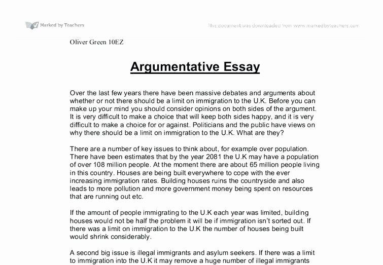 Satire Essay Example Unique Examples A Satire Essay Example Satire