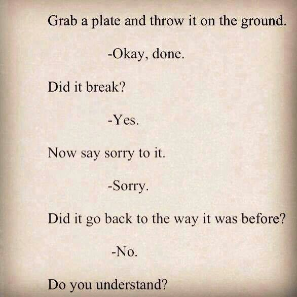 Drop A Plate On The Floor Did It Break Yes Now Say Sorry To It
