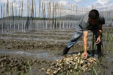 Jornalista mostra a realidade dos pescadores do manguezal em livro-reportagem