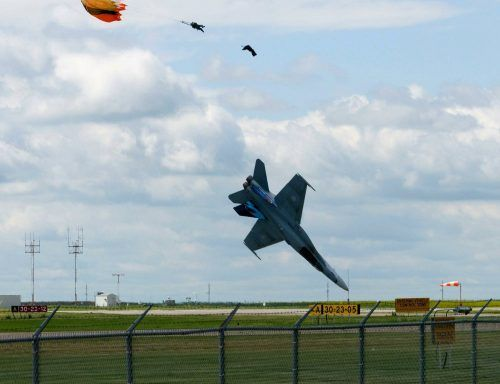 perfectly-timed-photos-timing-45.jpg (500×384)