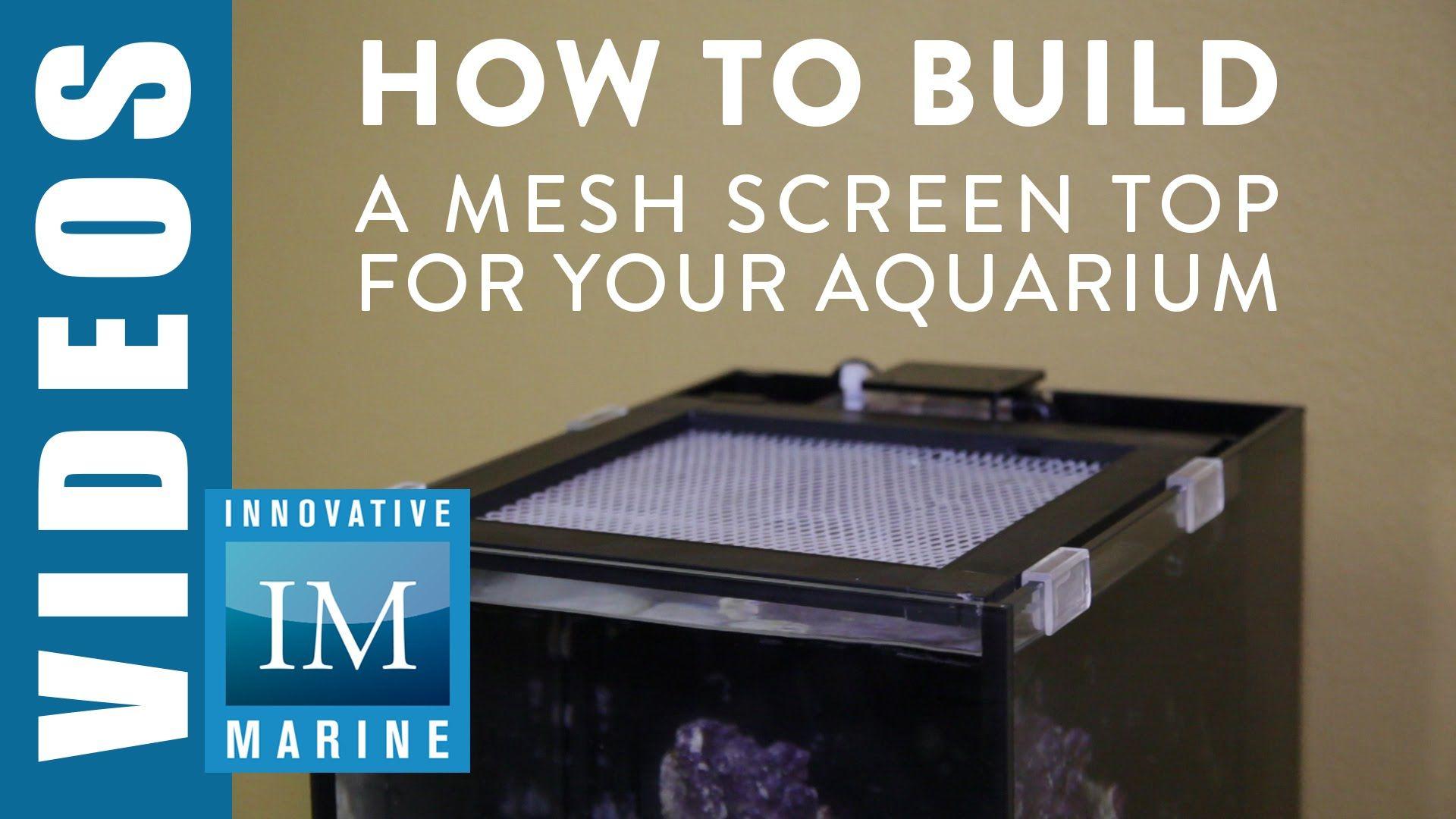Aquarium Tank Clips Aquarium Pinterest