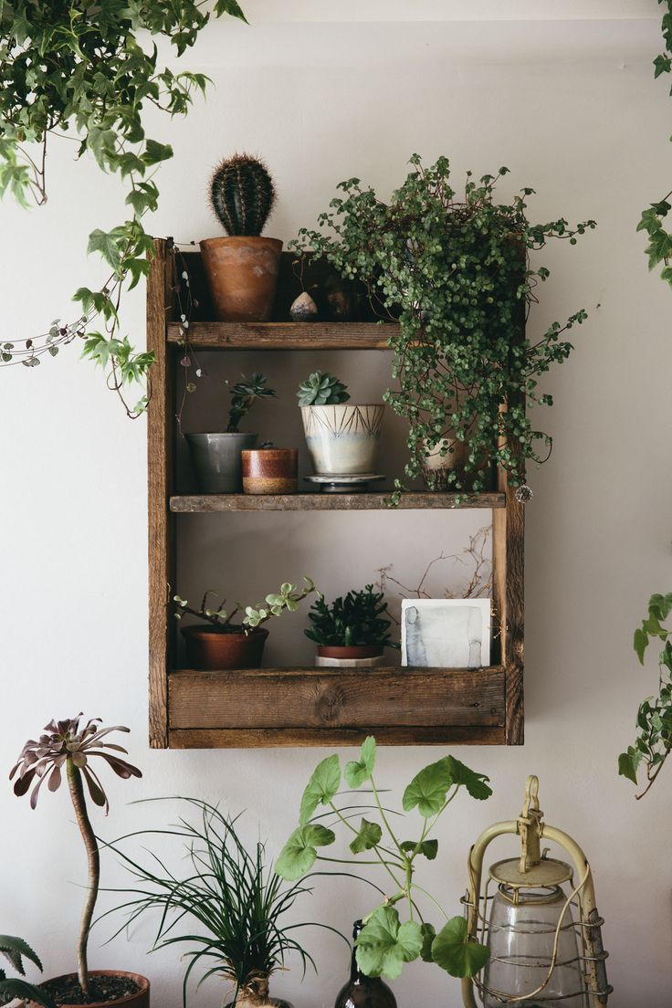 Home decor plants ideas  Create a bohemian style feel with these rustic pallet wood shelves
