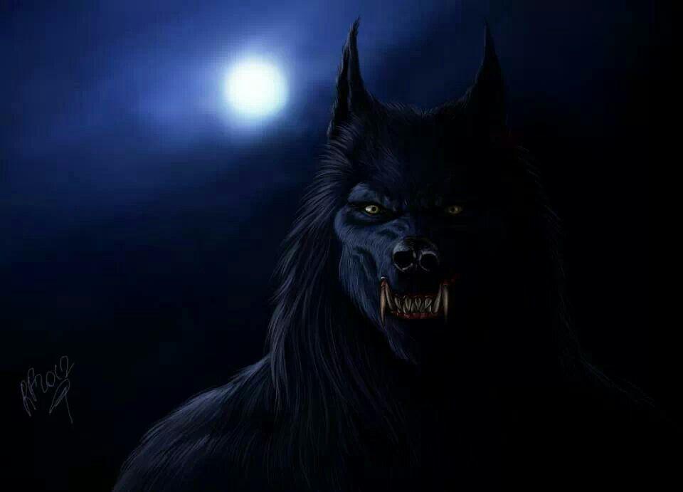 Image result for werewolf fantasy art | Strange, dark stuff ...