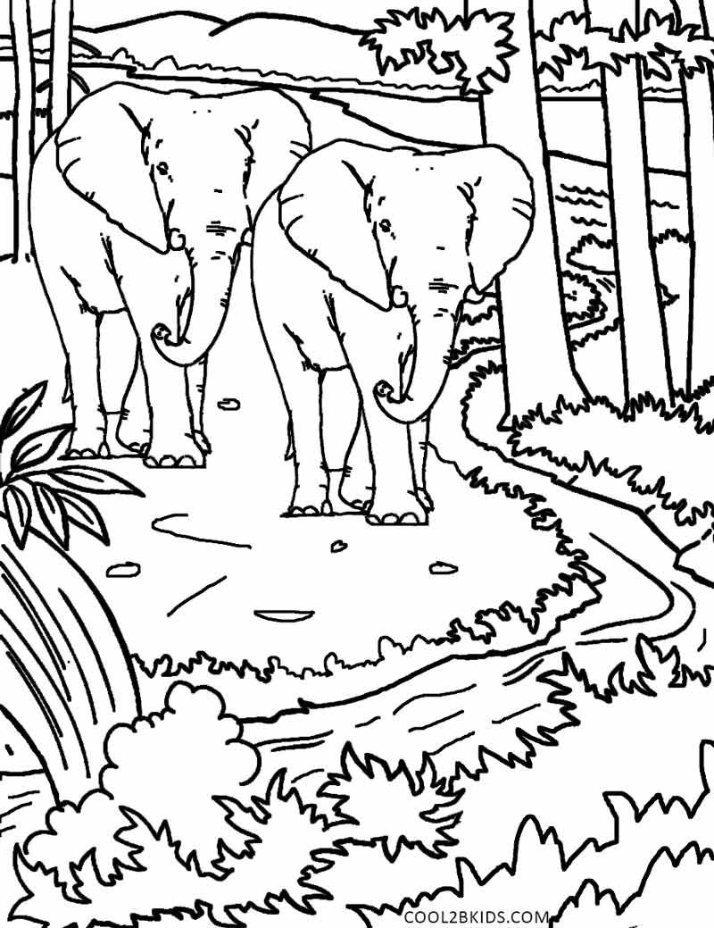 Printable Nature Coloring Pages For Kids Cool2bkids Coloring Pages Nature Unicorn Coloring Pages Butterfly Coloring Page