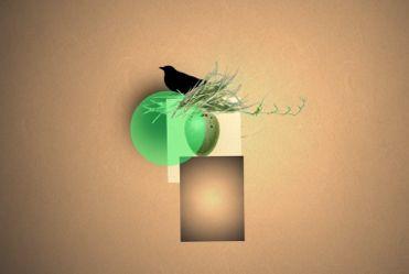 Black Bird on Green Orb