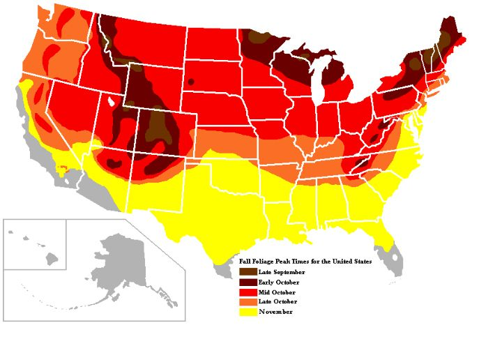 Fall Foliage Map In United States Read The Blog Post For More - Us foliage map