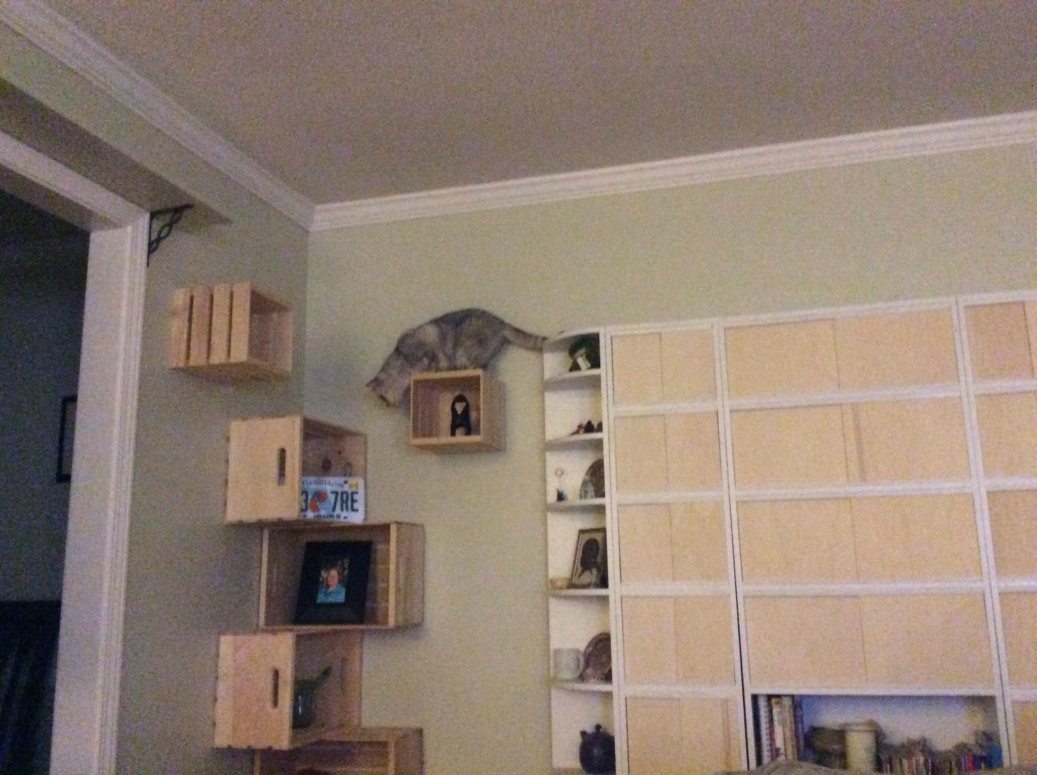 diy cat shelves using crates from home depot large washers screws rh pinterest com