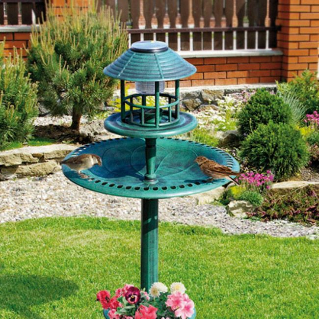 Create A Peaceful Bird Sanctuary In Your Garden All Year