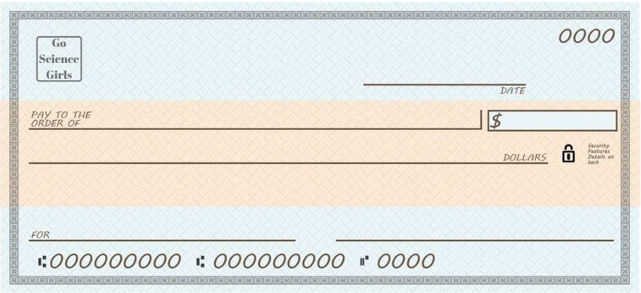 Blank Business Check Template Business Checks Blank Check Payroll Template