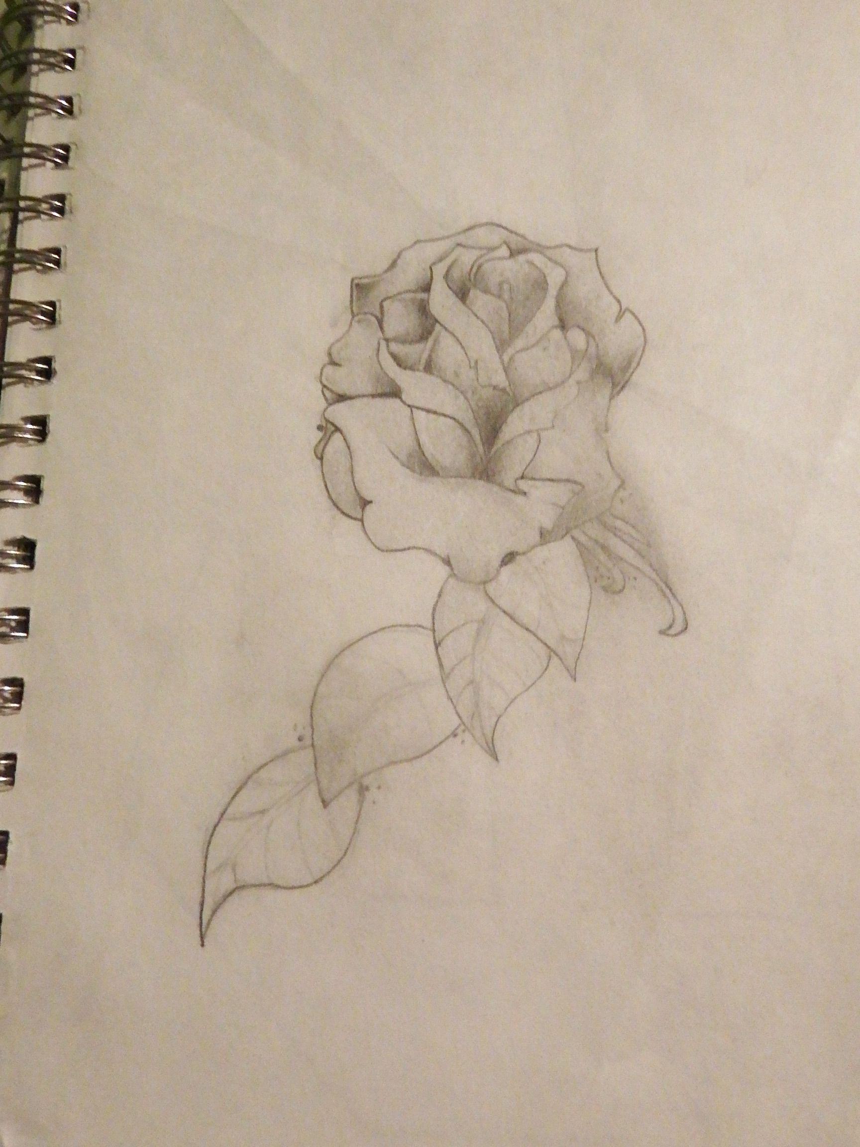 Flower drawing my own drawings pinterest drawings