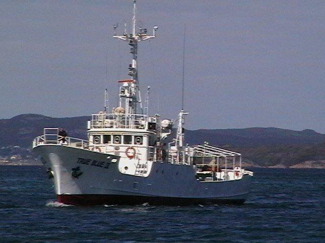 S N 379 29 98m Longline Fishing Boat Used New Commercial Boats For Sale In Wa Australia Ocean Commercial Boats For Sale Boats For Sale New Commercials