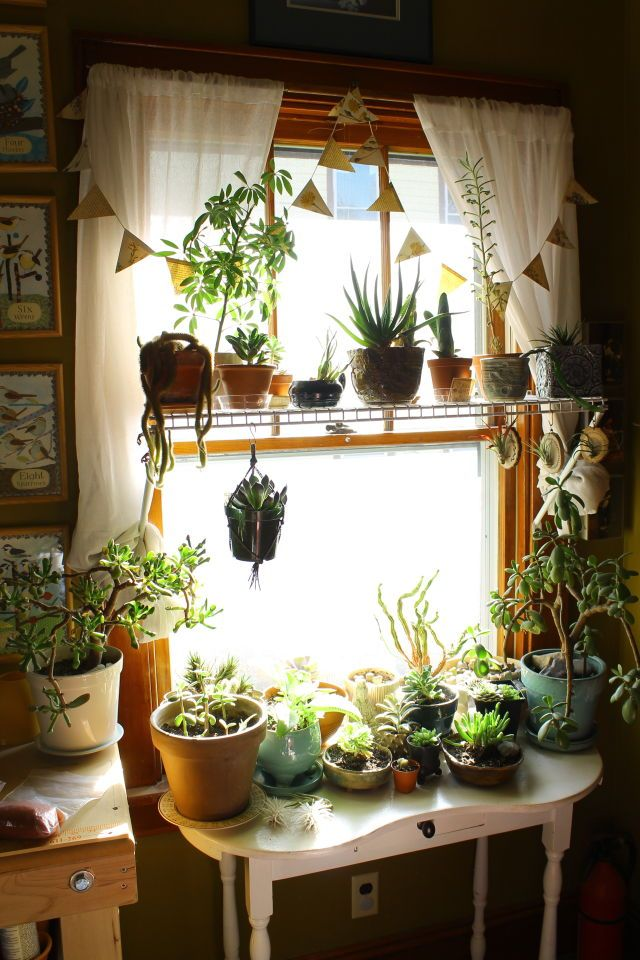 Kitchen Windows Tables And Plants Just Seem To Go Together Bohemian Bedroom Diy