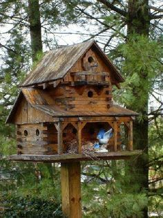 Houten Huis Bouwen A Birdie S House Bird House Large Bird Houses Unique Bird Houses