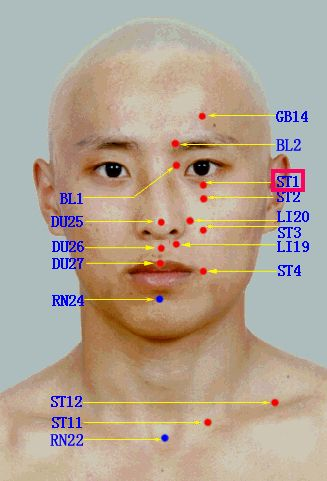 Acupuncture points on the face. | Acupuncture points ...