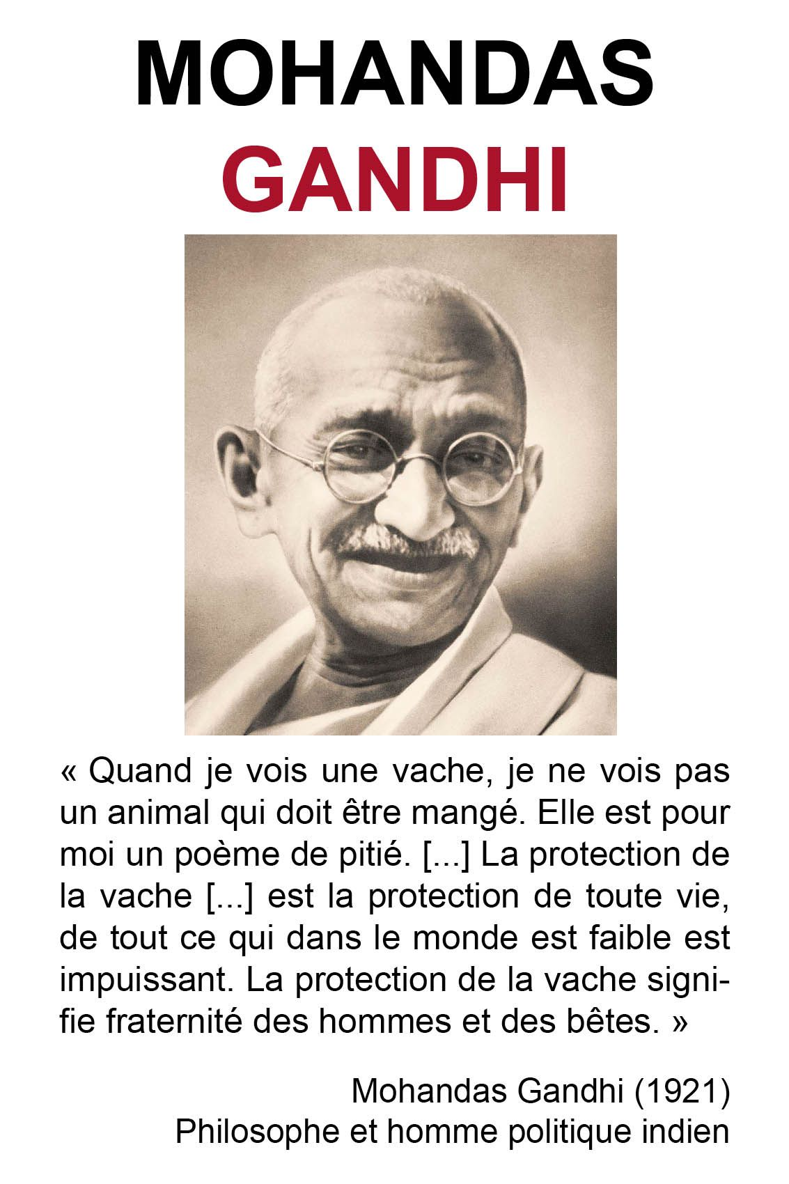 Gandhi Jpg 1133 1700 Citation Citation Animaux Belles Citations