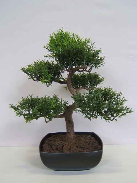 Myrte bonsai. Myrthen Bonsai in quadratischer Kunststoffschale - Online - Shop für Kunstpflanzen, Kunstblumen, Deko-Obst & Gemüse