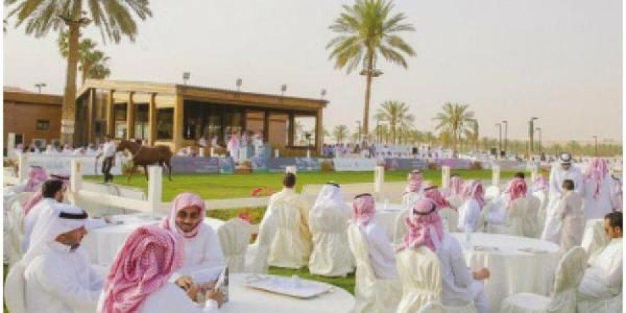 2 7 مليون مبيعات مزاد الخالدية للخيل العربية Arabian Horse Arabians Horses