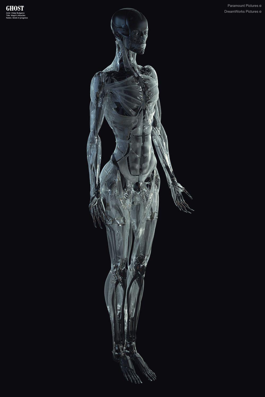150906_CHAR_MajorMuscles_VB_01.jpg (1000×1500) | Robot | Pinterest ...