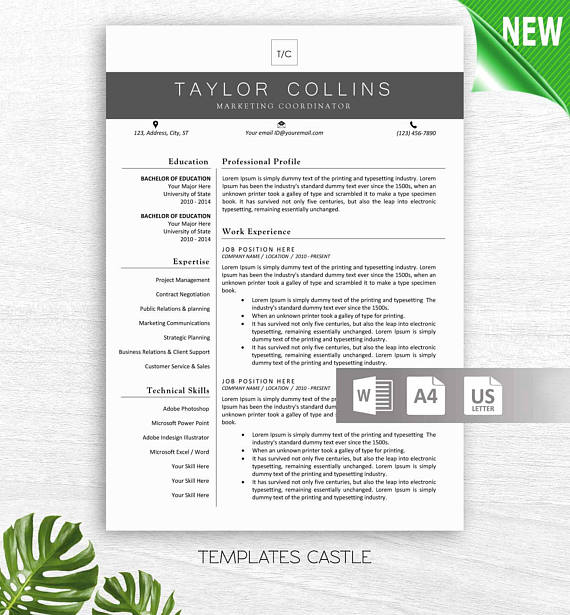 Professional Resume Template Free Resume Template Instant  Resume