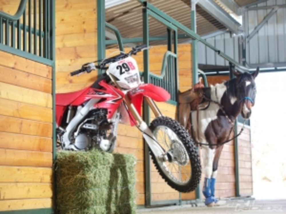 Bike Vs Horse Bike Wins Again Dirt Rider Magazine Horses