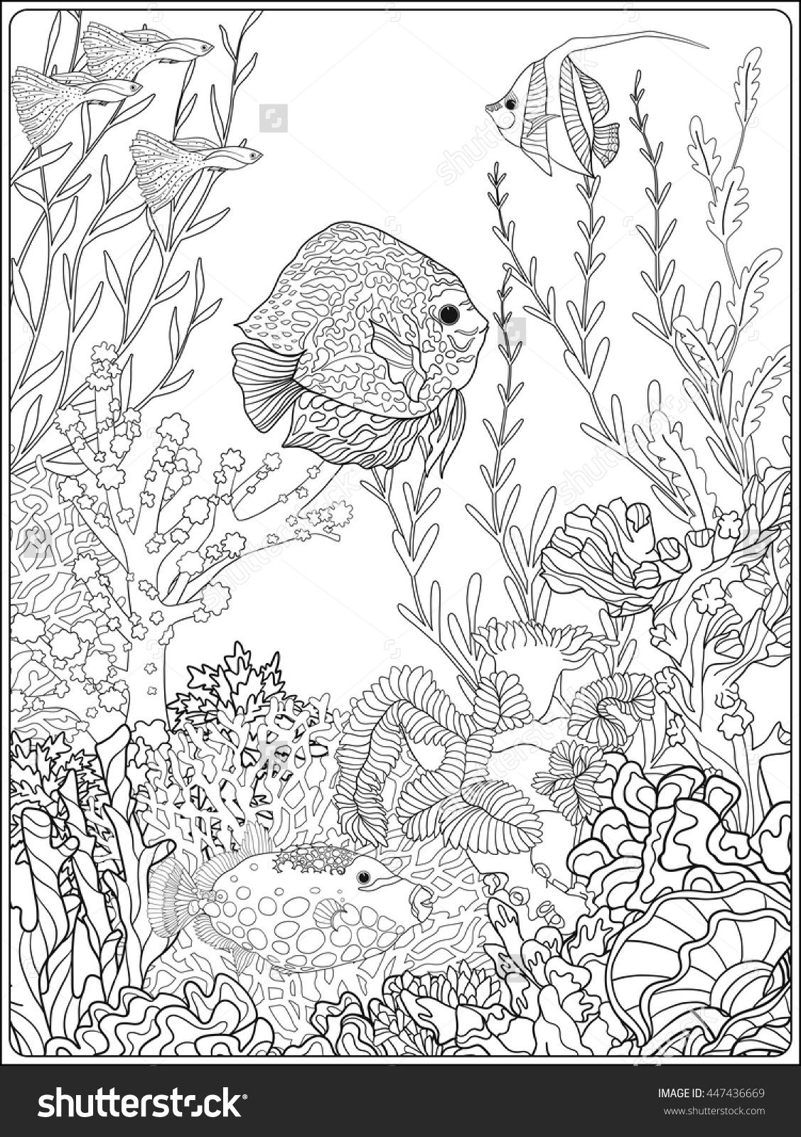 Adult coloring book. Coloring page with underwater world coral reef ...