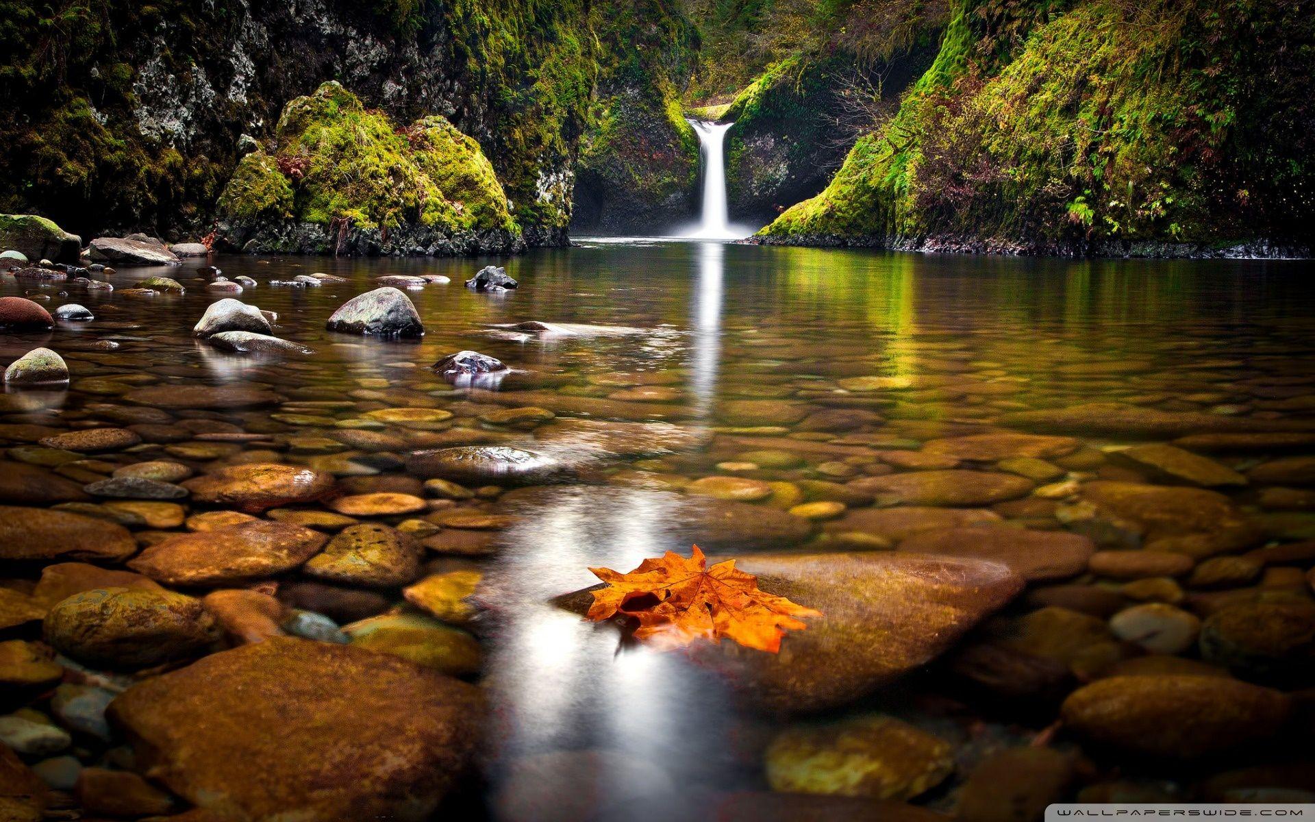 Yellow Leaf In The River Hd Desktop Wallpaper High Definition Waterfall Wallpaper Autumn Waterfalls Waterfall