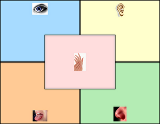 FREE 5 Senses Graphic Organizer - Pinned by @PediaStaff – Please visit http://ht.ly/63sNt for all (hundreds of) our pediatric therapy pins