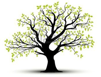 arbre dessin ensemble de vecteurs arbre d coratif et des feuilles vertes avec des ombres. Black Bedroom Furniture Sets. Home Design Ideas