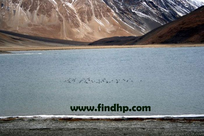 Chadertal lake in leh ladakh- glorious lake