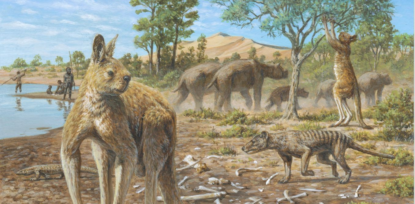 Aboriginal Australians Co Existed With The Megafauna For At Least 17 000 Years The Extinction Of The Giant Repti Megafauna Prehistoric Animals Extinct Animals