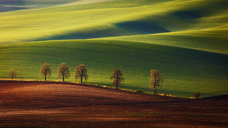 South Moravia, Czech republic, author: Martin Rak