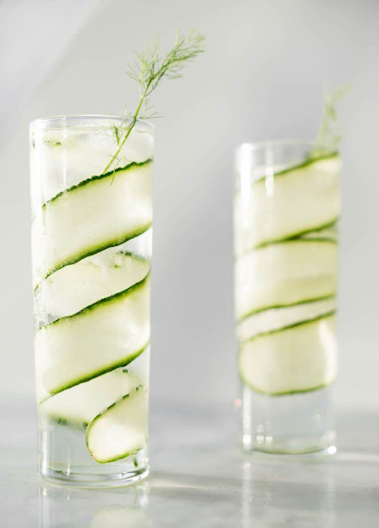 Cucumber Fennel Spanish Gin & Tonic #bestgincocktails
