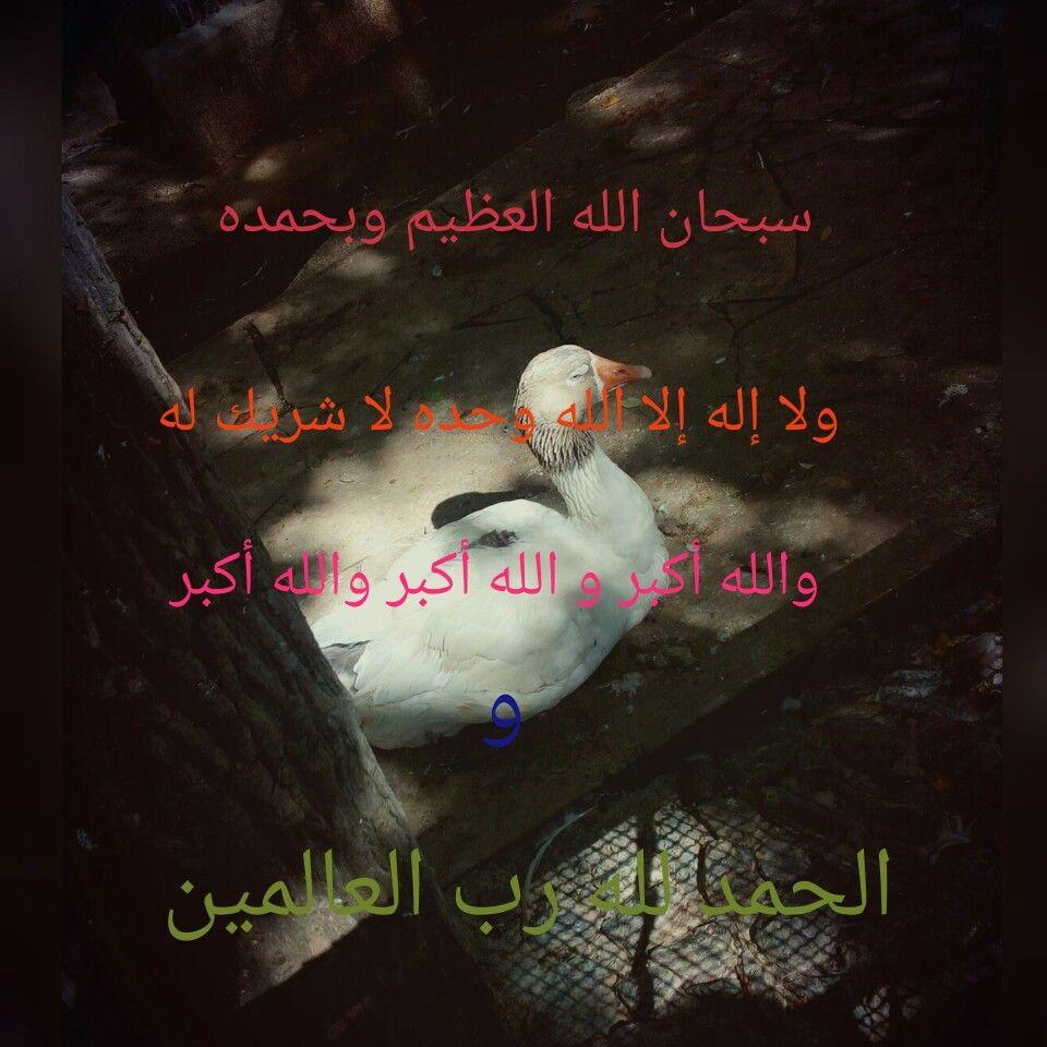 السلام عليكم ورحمة الله تعالى وبركاته و عطر فمك بخير الذكر