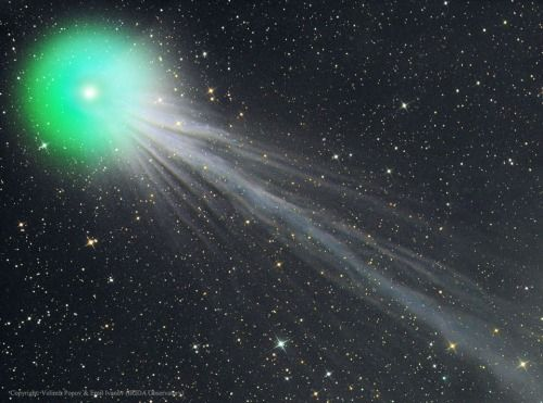 NASA Astronomy Picture Of The Day 2015 January 21 Complex Ion Tail Comet Lovejoy
