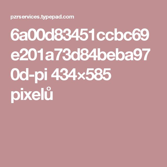 6a00d83451ccbc69e201a73d84beba970d-pi 434×585 pixelů