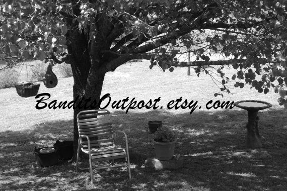 Black and white picture of a gorgous summers day by BanditsOutpost, $7.00