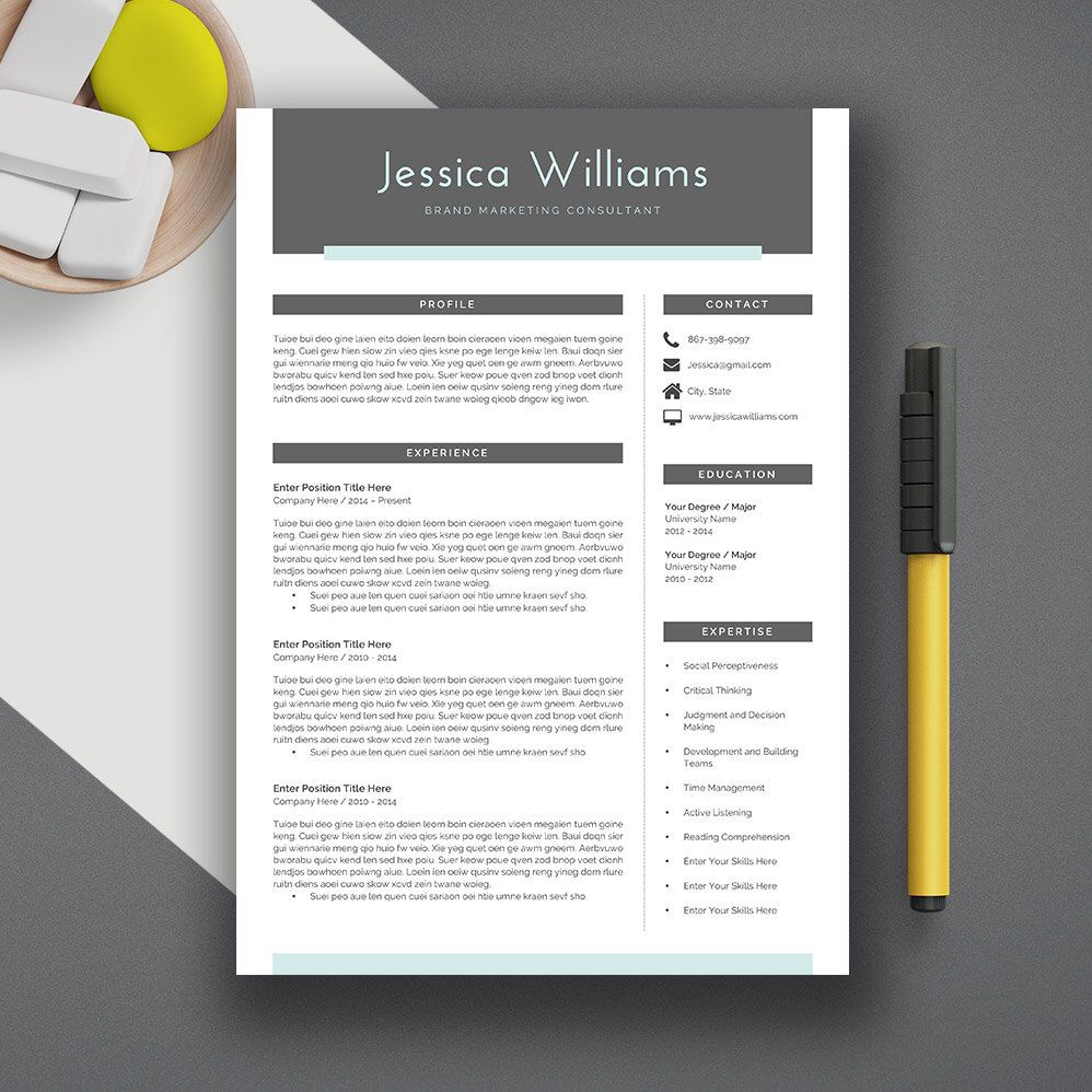 making resume format%0A  allcupation Professional  Resume  Template   CV Template  Extra Page