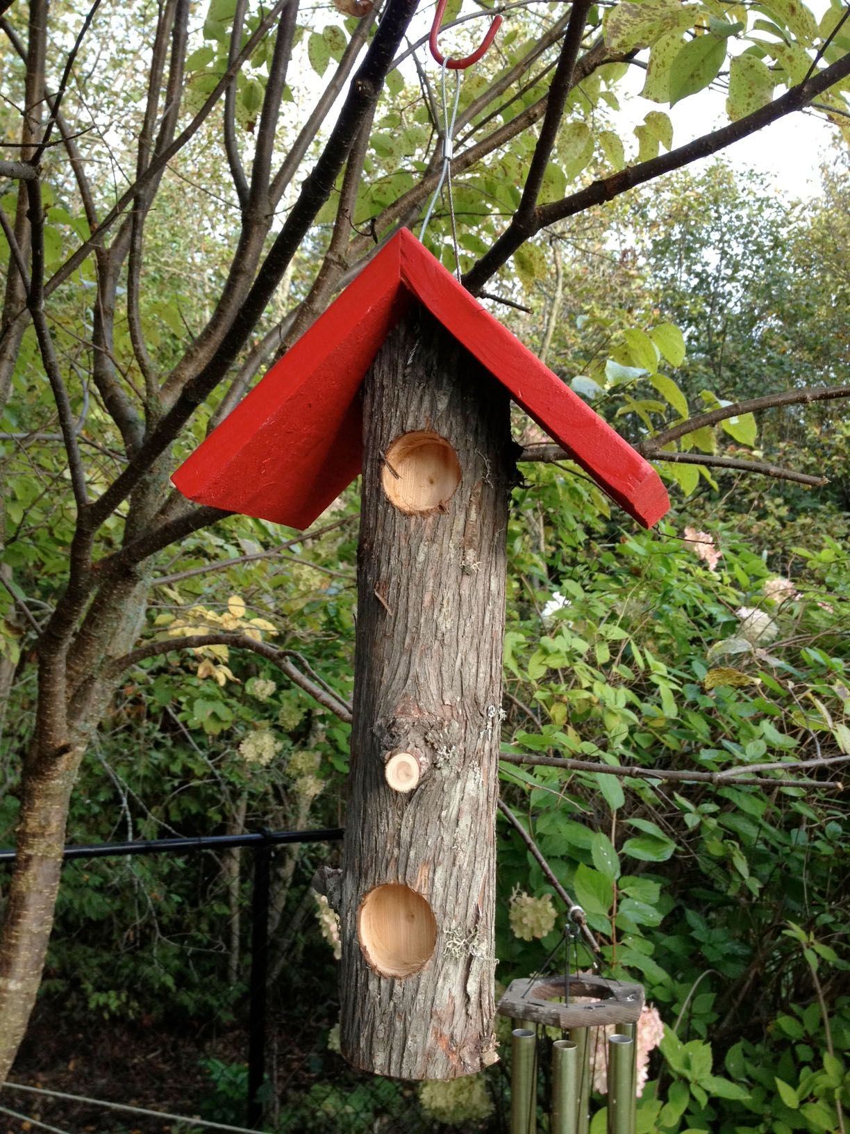 how to keep woodpeckers off house