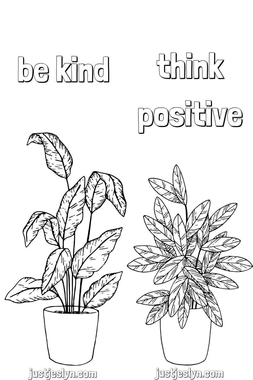 Pin On Plants [ 1500 x 1000 Pixel ]